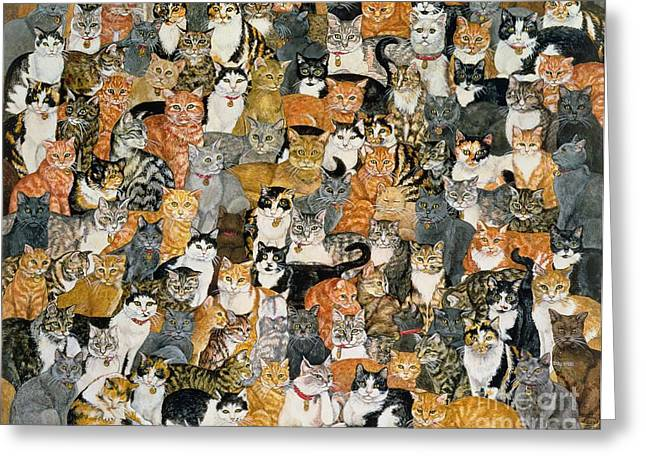 Mammals Greeting Cards - Double Cat Spread Greeting Card by Ditz