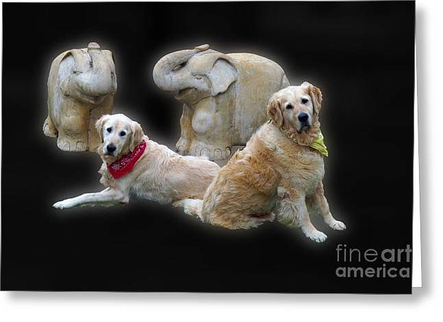 Lucky Dogs Greeting Cards - Double Date Greeting Card by Cassandra Buckley