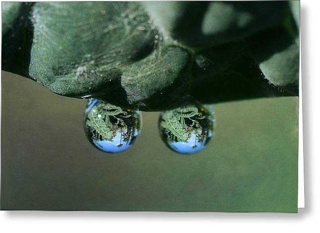 Reflection In Water Greeting Cards - Double Drop Greeting Card by Fraida Gutovich