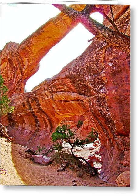 Double O Arch Greeting Cards - Double O Arch from Devils Garden Trail in Arches National Park-Utah  Greeting Card by Ruth Hager