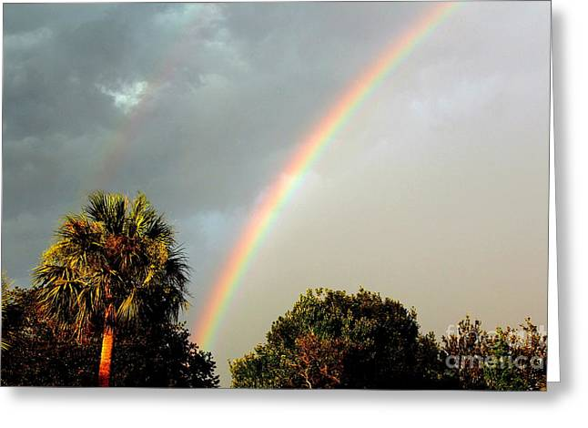 Double Rainbow Greeting Cards - Double Rainbow - Left Side Greeting Card by Carla Anklam
