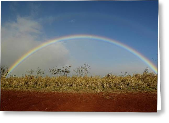 Double Rainbow Over A Field In Maui Greeting Card by Stocktrek Images