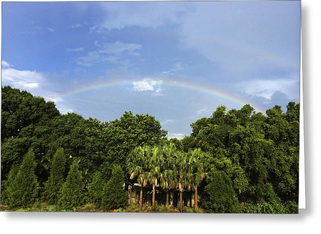 Double Rainbow Greeting Cards - Double Rainbow St. Pete FL Greeting Card by Nicki La Rosa