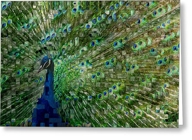 Peafowl Greeting Cards - Double Vision Greeting Card by Jack Zulli