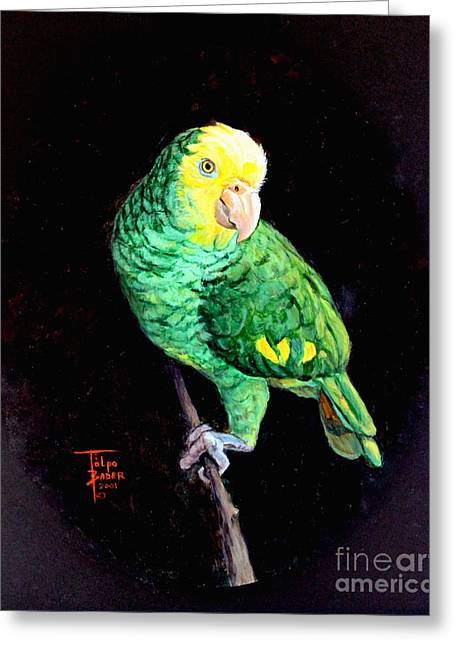 Amazon Greeting Card Greeting Cards - Double Yellow Headed Amazon Paco Greeting Card by Art By - Ti   Tolpo Bader