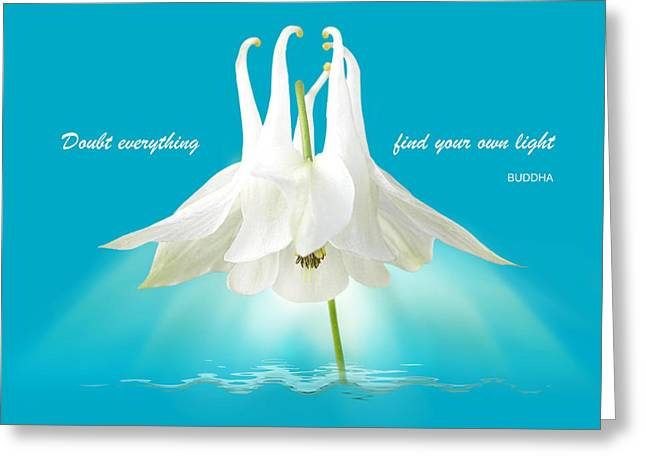 Large White Flower Close Up Greeting Cards - Doubt Everything - Find Your Own Light Greeting Card by Gill Billington