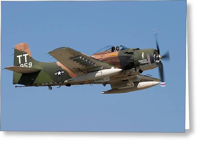 Air Shows Greeting Cards - Douglas AD-4 Skyraider Greeting Card by Adam Romanowicz