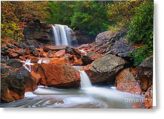 Stream Greeting Cards - Douglas Falls D30012648 Greeting Card by Kevin Funk