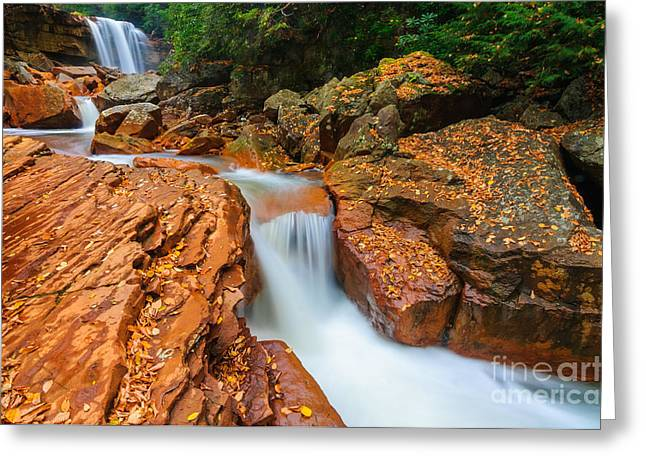 Creek Greeting Cards - Douglas Falls D30012676 Greeting Card by Kevin Funk