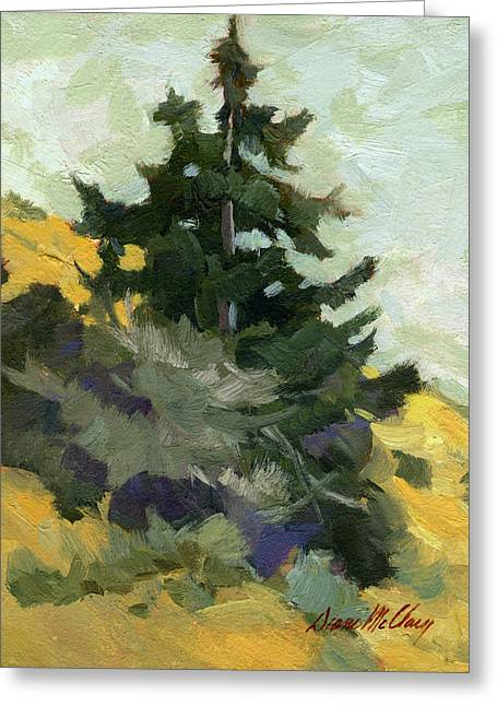 Douglas Fir Trees Greeting Cards - Douglas Fir in Washington Greeting Card by Diane McClary
