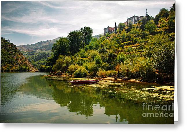 Viticulture Greeting Cards - Douro Landscape I Greeting Card by Carlos Caetano