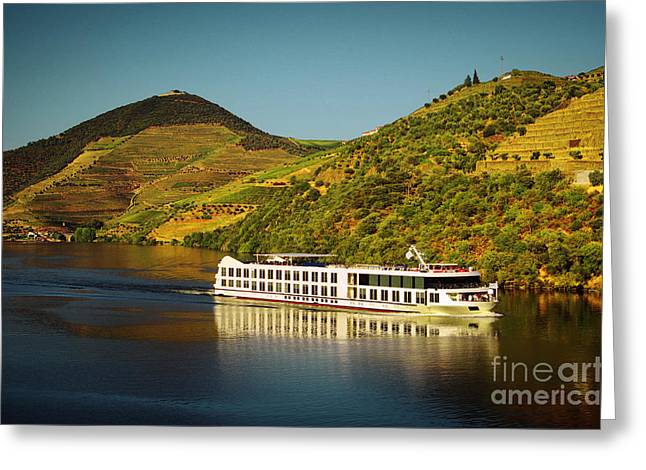 Vineyard Landscape Greeting Cards - Douro Landscape V Greeting Card by Carlos Caetano