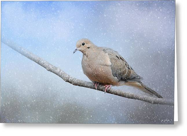 Birds In Winters Greeting Cards - Dove In The Snow Greeting Card by Jai Johnson