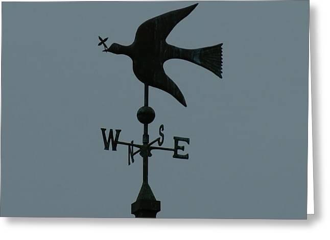 Dove Weathervane Greeting Card by Ernie Echols