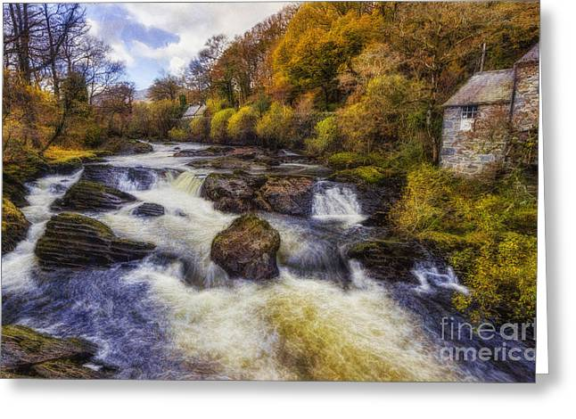 Lush Colors Greeting Cards - Down By The River Greeting Card by Ian Mitchell
