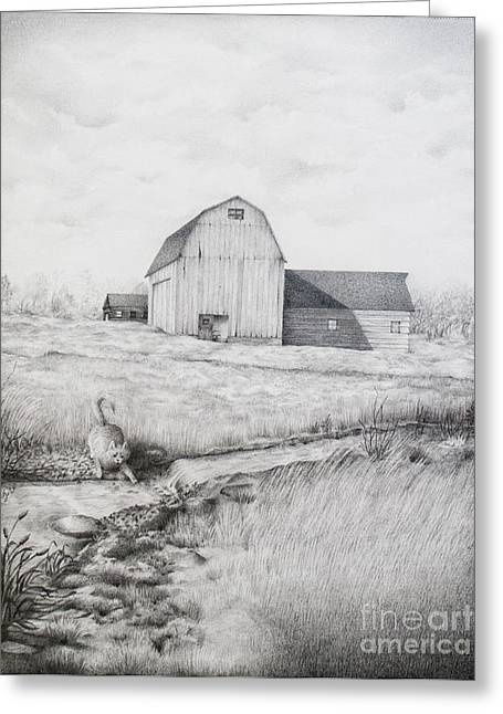 Old Barn Drawing Greeting Cards - Catching Fishes Greeting Card by Emily Wickerham