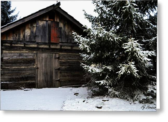 Vinter Greeting Cards - Down in the Country Greeting Card by Lj Lambert