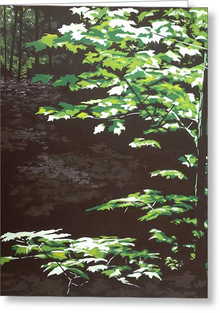 Dappled Light Greeting Cards - Down In The Holler Greeting Card by Jeffrey Bess