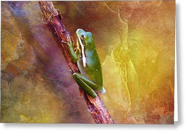 Waterscape Digital Art Greeting Cards - Down In The Swamp Tree Frog Greeting Card by J Larry Walker