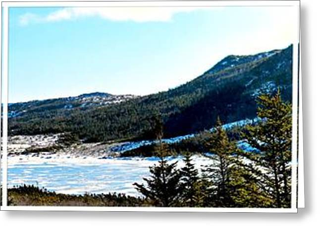 Loose Greeting Cards - Down In the Valley Triptych Greeting Card by Barbara Griffin
