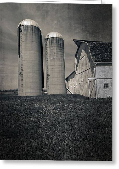 Summer On The Farm Greeting Cards - Down On The Farm Black And White Greeting Card by Dan Sproul