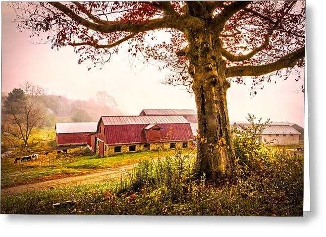 Red Roofed Barn Greeting Cards - Down on the Farm Greeting Card by Debra and Dave Vanderlaan