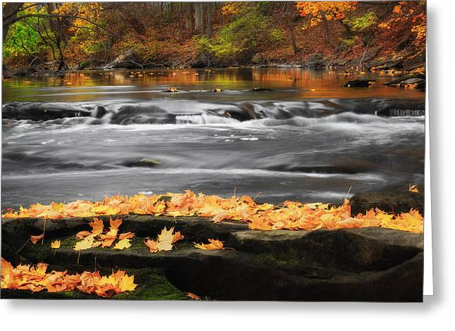 Reflections In River Greeting Cards - Down On The River Greeting Card by Bill  Wakeley