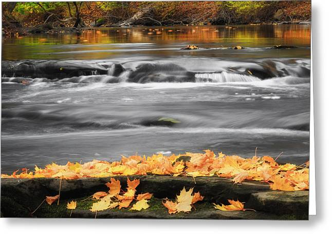 Reflections In River Greeting Cards - Down On The River Square Greeting Card by Bill  Wakeley