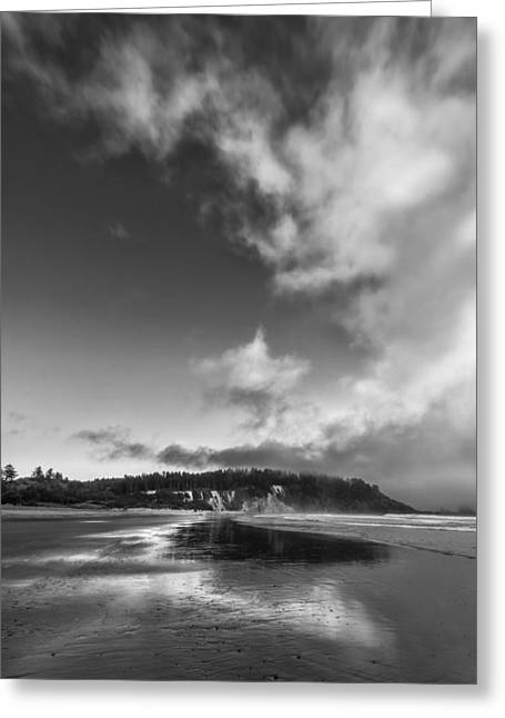 Olympic National Park Greeting Cards - Down the Beach Greeting Card by Jon Glaser