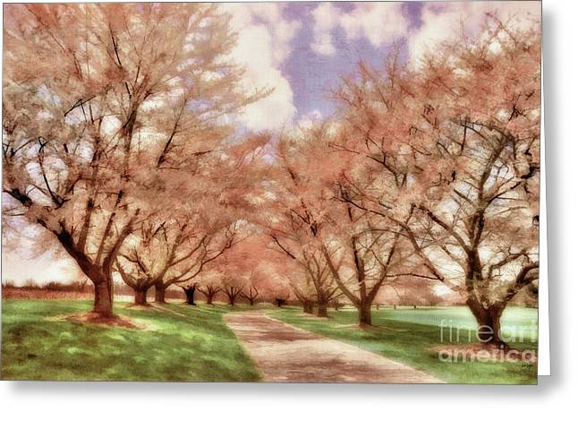 Walk Paths Greeting Cards - Down The Cherry Lined Lane Greeting Card by Lois Bryan