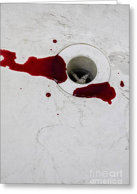 Drain Greeting Cards - Down the Drain Greeting Card by Margie Hurwich