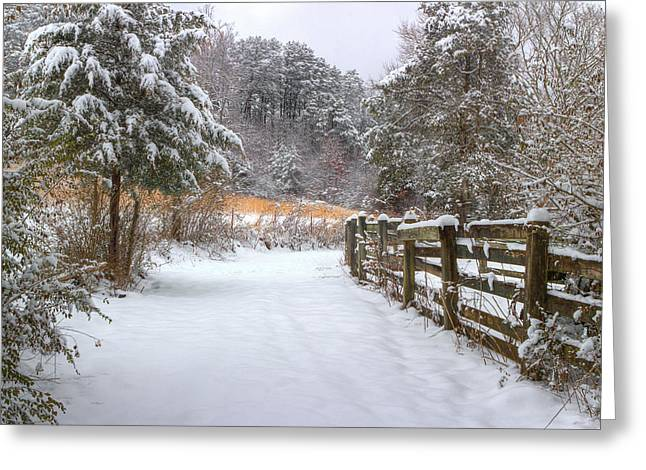 Fence Row Greeting Cards - Down The February Lane Greeting Card by Michael Eingle
