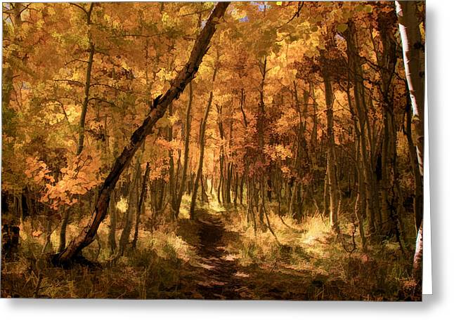 Glow Greeting Cards - Down the Golden Path Greeting Card by Donna Kennedy