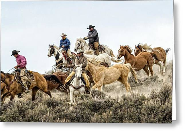 Colorado Cowgirl Greeting Cards - Down the Hill Greeting Card by Joan Davis