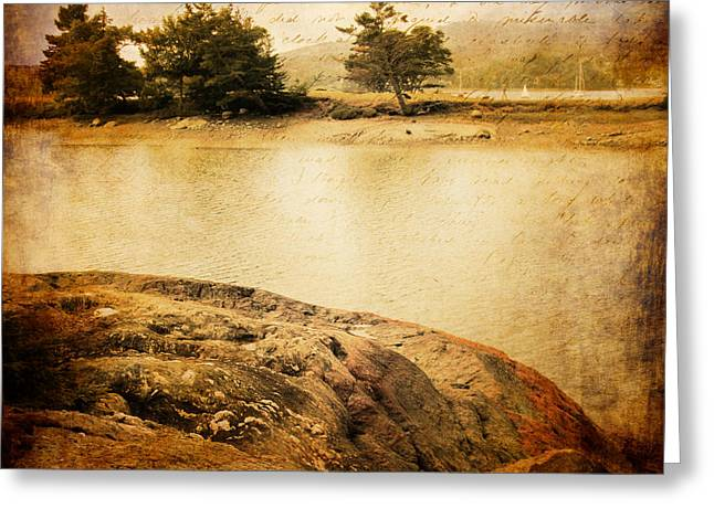 Maine Shore Greeting Cards - Down the Path II Greeting Card by Ericka O