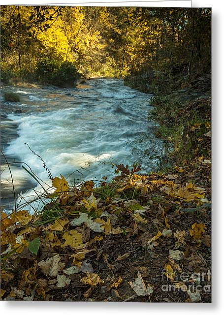 Beavers Bend Park Greeting Cards - Down the River Greeting Card by Iris Greenwell