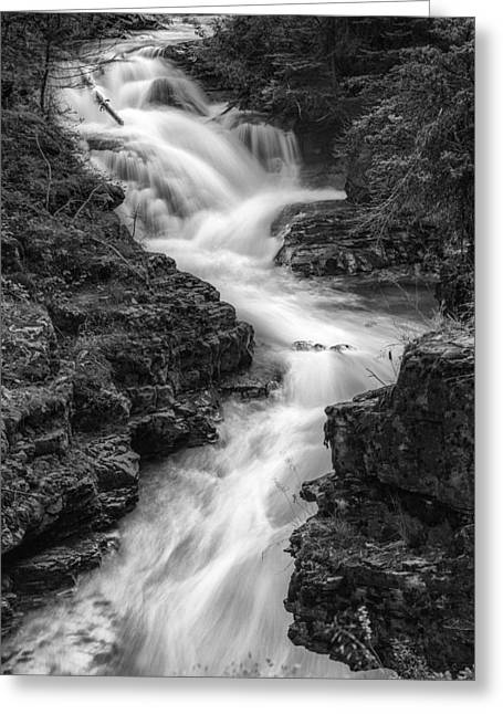 Black And White Waterfall Greeting Cards - Down the Stream Greeting Card by Jon Glaser