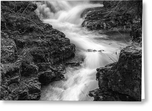 Down the Stream Greeting Card by Jon Glaser