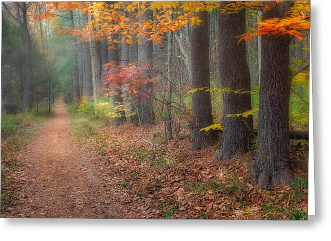 Down The Trail Greeting Card by Bill  Wakeley
