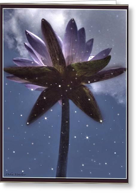 Vision Of Loveliness Greeting Cards - Down Under  Lotus Greeting Card by Debra     Vatalaro
