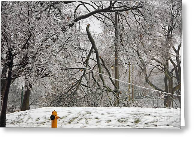 Winter Storm Greeting Cards - Downed Trees and Wire Greeting Card by Charline Xia