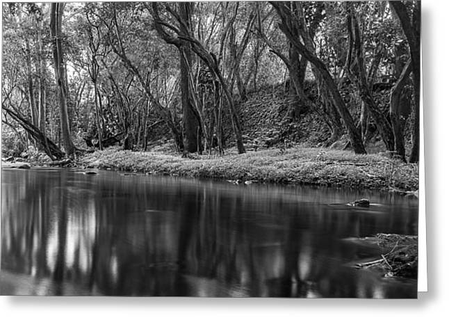 Special Promotions Greeting Cards - Downstream Greeting Card by Jon Glaser