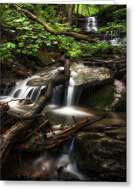 Downstream Greeting Card by Mark Papke