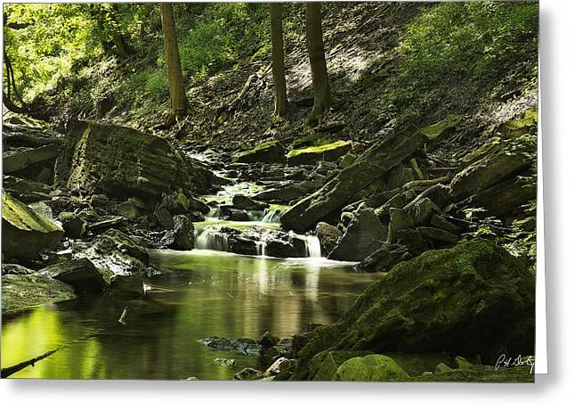 Escarpment Greeting Cards - Downstream Moss Greeting Card by Phill  Doherty