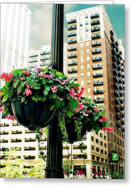 Hanging Planter Greeting Cards - Downtown Chicago Greeting Card by CJ Anderson