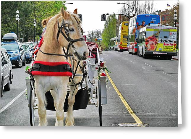 Horse And Buggy Greeting Cards - Downtown horses buses and cars Greeting Card by Simply  Photos