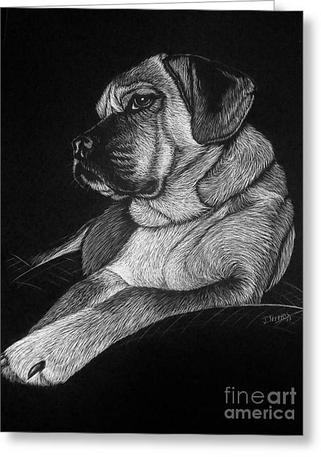 Dozer Greeting Card by Jennifer Jeffris