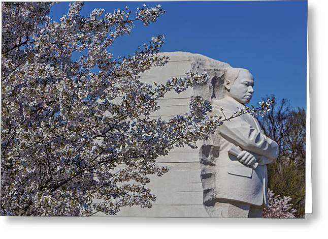 Capitol Flowers Greeting Cards - Dr Martin Luther King Jr Memorial Greeting Card by Susan Candelario