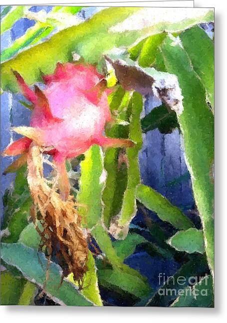Organic Greeting Cards - Dragon Fruits  Greeting Card by Lanjee Chee