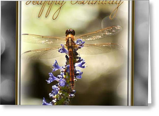Dragonfly Birthday Card Greeting Card by Carolyn Marshall